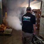 PlagasUY fumigaciones